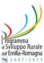 Logo PSR